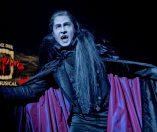 《吸血鬼之舞》(Tanz der Vampire)