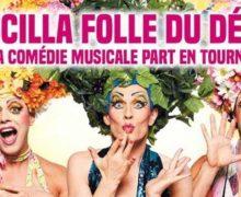 资讯翻译|法语音乐剧《沙漠妖姬》将于2019年开启全法巡演
